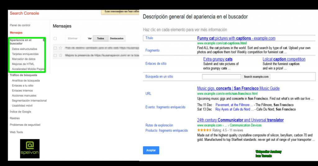 Apariencia buscador Google Search Console