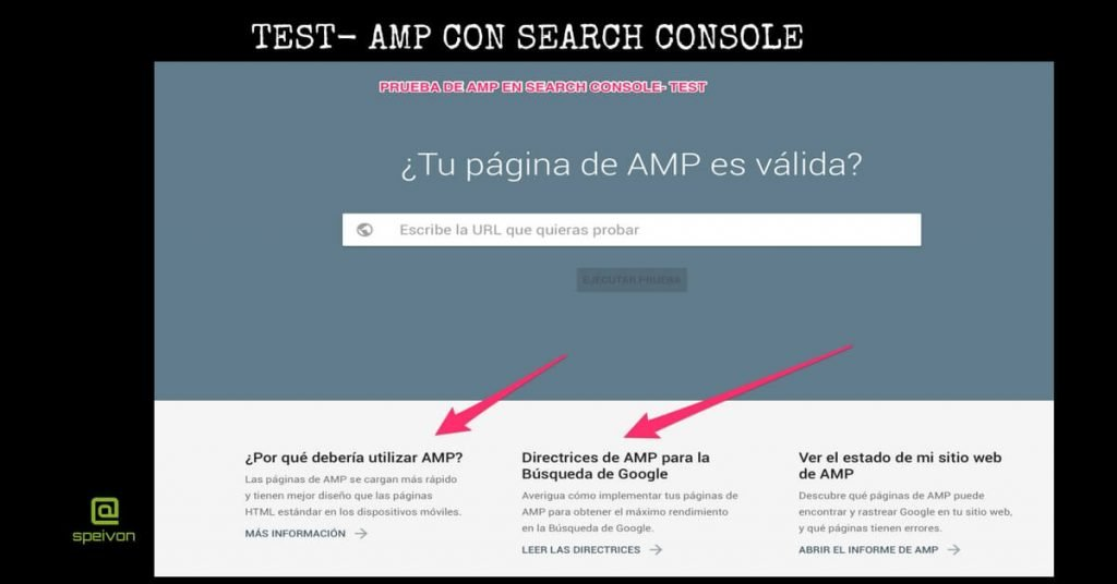 test amp search console